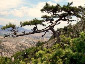 Sudak desde monte Sokol