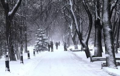 Parque Mariinsky