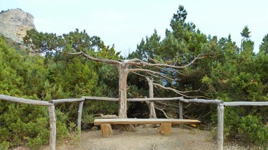 Reserva Natural de Sabinas