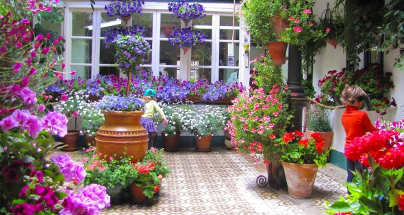 patios-cordoba
