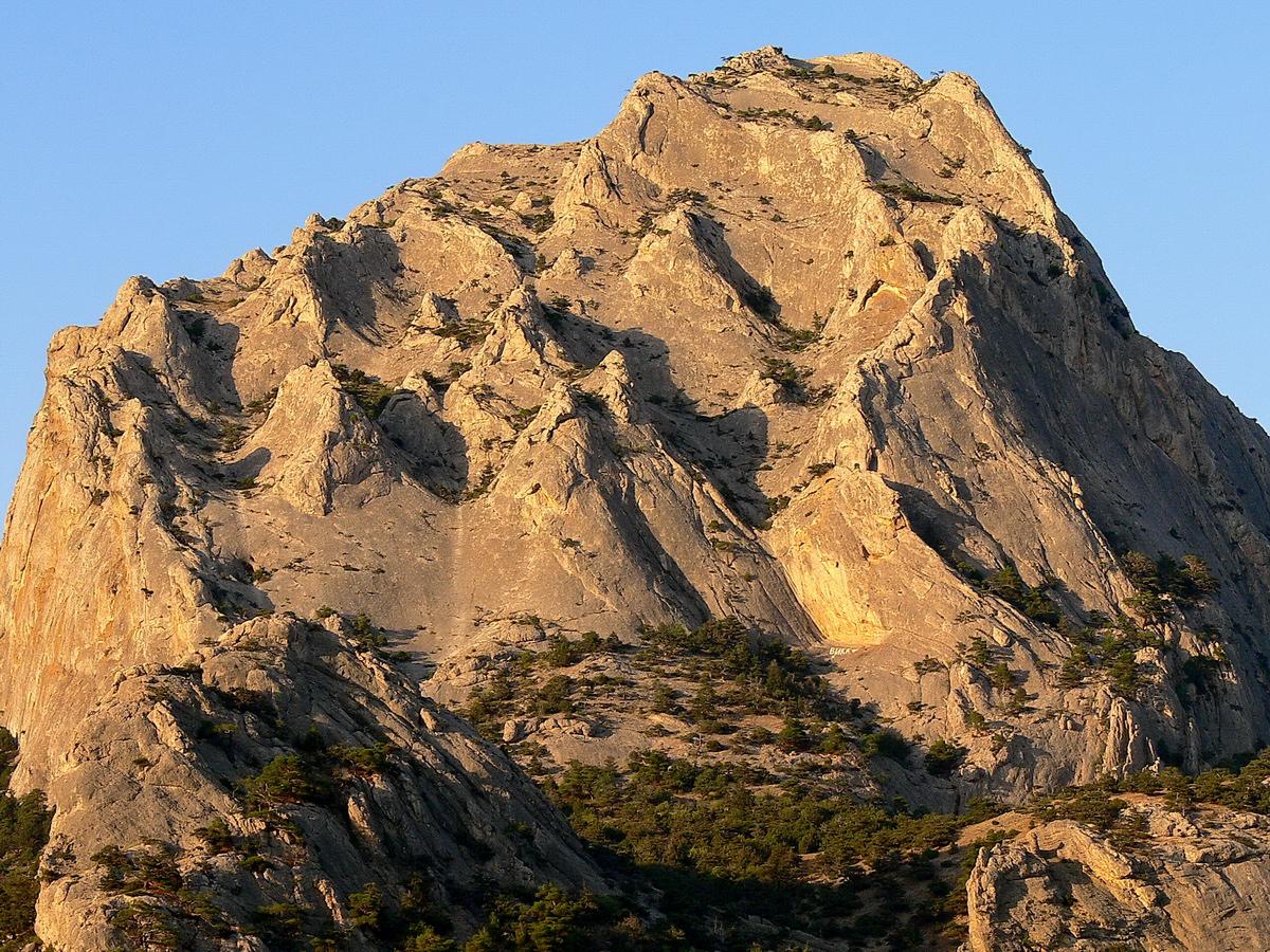 Monte Sokol 06