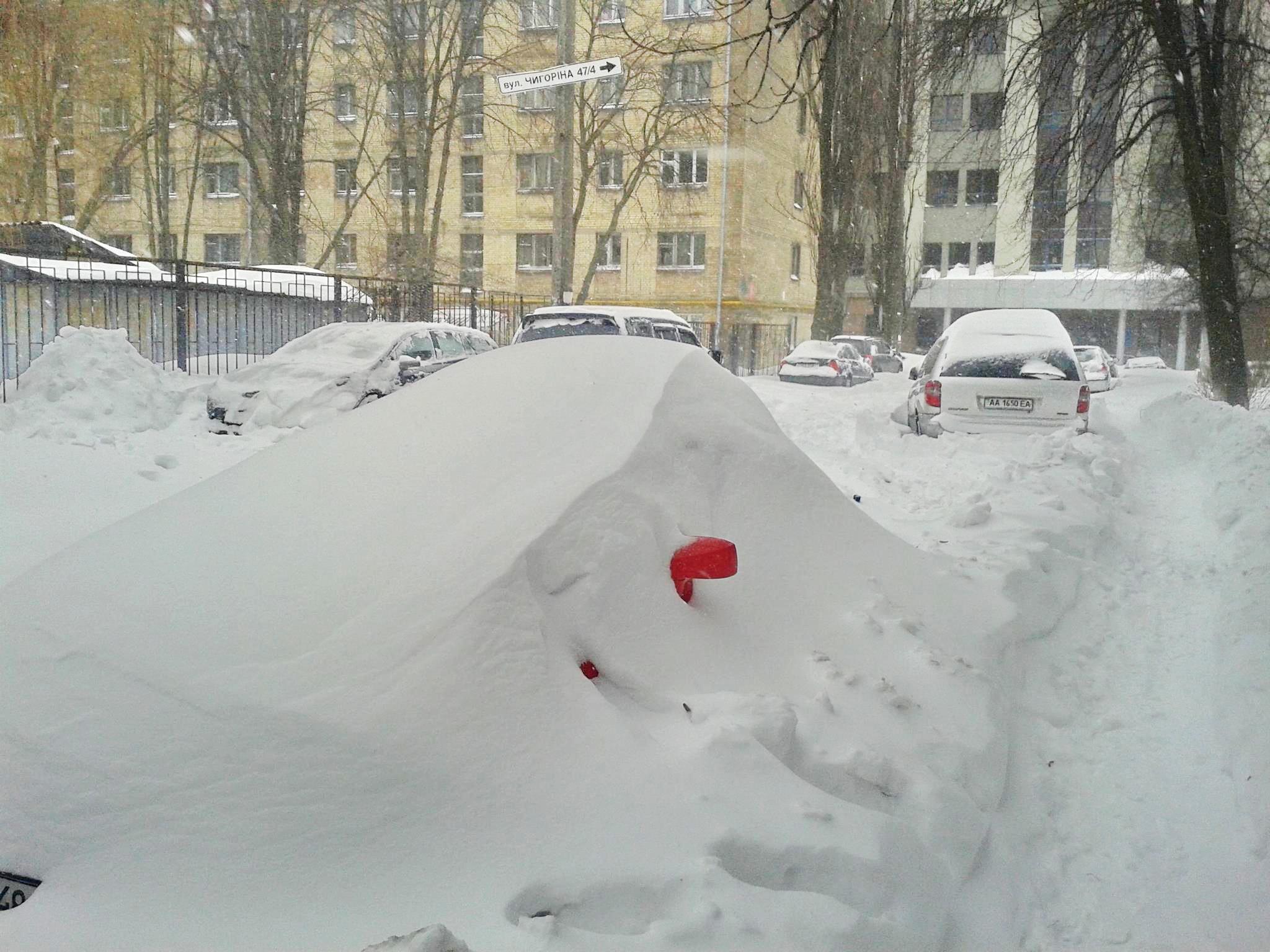 Foto:  Алёна Королёва. Los retrovisores sirven para identificar el coche