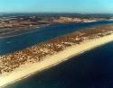 Playa de Nueva Umbría1