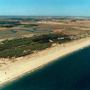 Playa del Hoyo